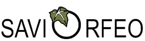 Logo Ditta 300 DPI sfondo bianco 300x86
